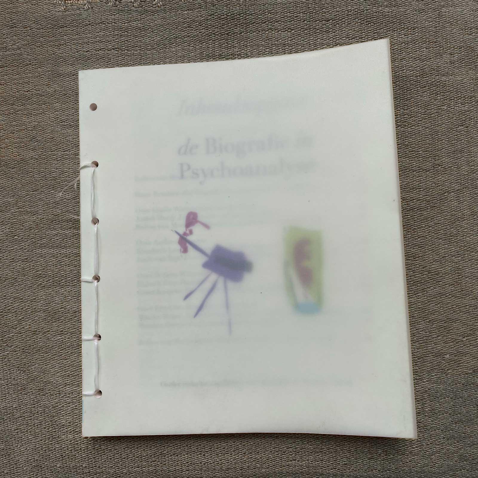 omslag boek Biografie in Psychoanalyse